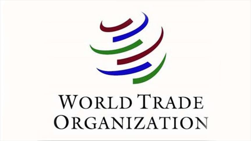 world trade organisation economists
